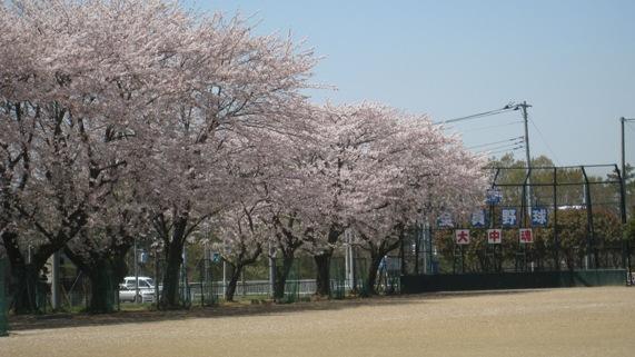 大山口中学校 徒歩29分まで2300m
