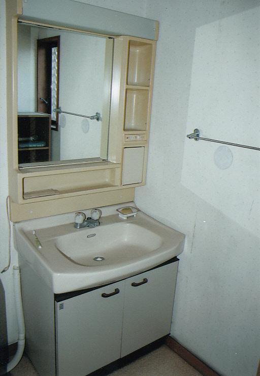 ちょっと広めの洗面室