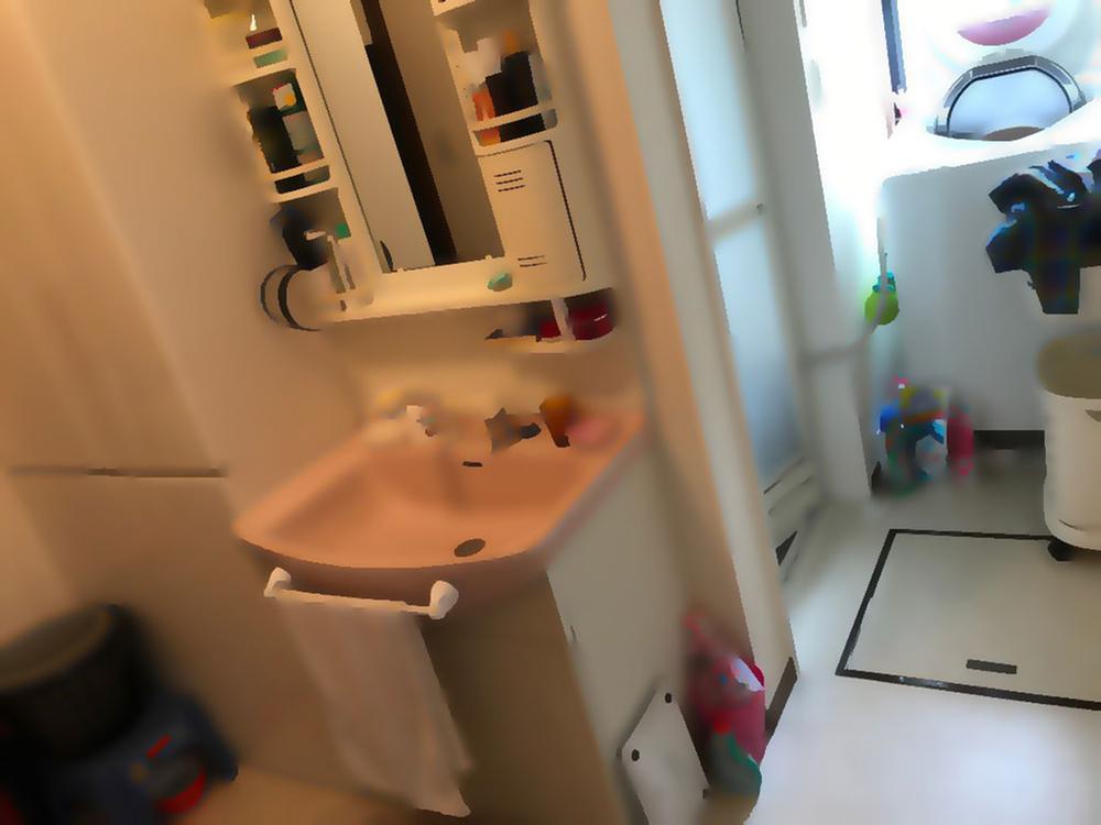 脱衣所と洗面所が区切られているから何かと便利です♪