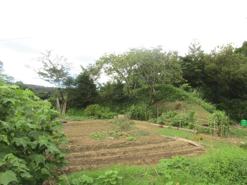 菜園用地・住宅用地として!