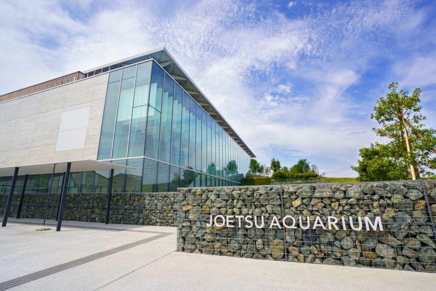 上越市立水族博物館うみがたりまで300m 大人気の上越市立水族博物館うみがたりがすぐ近く。年間パスポートを購入すれば毎日遊びに行けます!