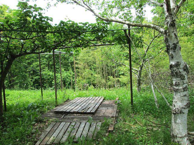 敷地内 雨水の貯水場、手作りです。<BR>農作物に利用できます。