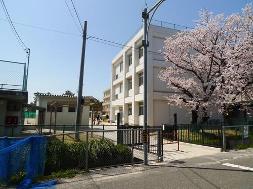 津島市立蛭間小学校まで1280m 明治42年開校