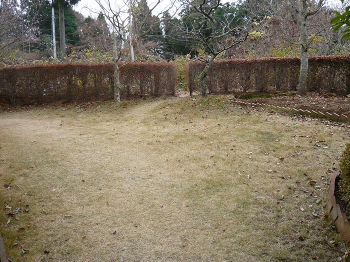 平坦で広い芝庭付き