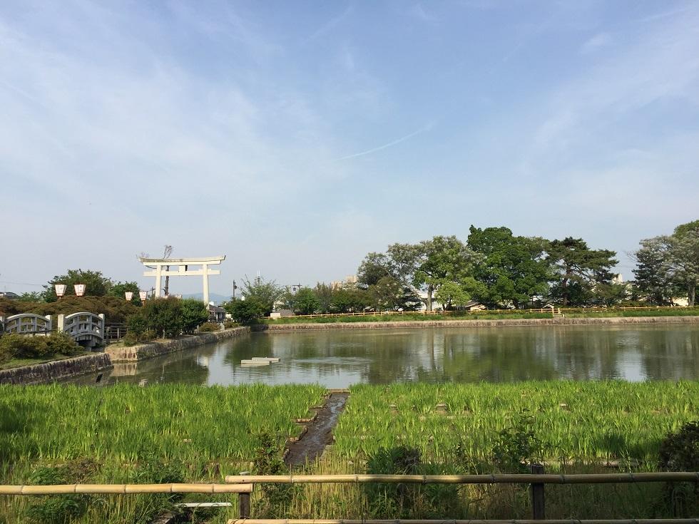 長岡公園まで1053m