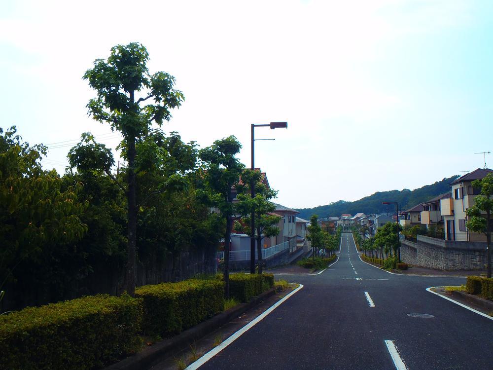 現地(2018年4月)撮影