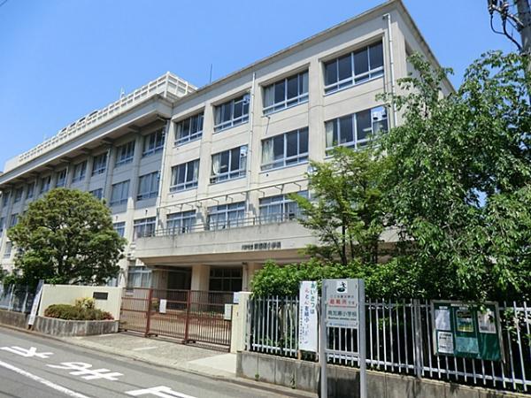 小学校 川崎市立南加瀬小学校(小学校)まで579m