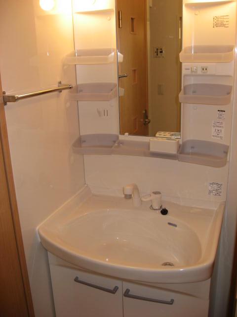 洗面所 大きな洗面ボウルでシャワーヘッド付き!