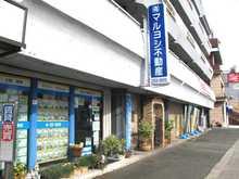 【店舗写真】(有)マルヨシ不動産