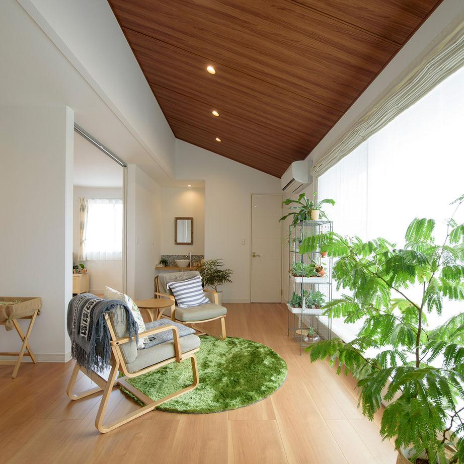 伸びやかな大空間に、植物の緑が映える洗練されたインテリア。カフェのようなくつろぎの住まい画像1