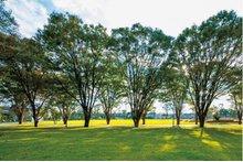 パークビレッジ南町田の周辺環境の特徴画像
