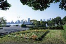 ベイサイドタワー晴海(BAYSIDE TOWER HARUMI)の周辺環境の特徴画像