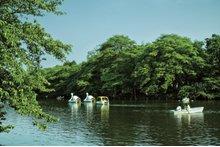 シティハウス武蔵野の周辺環境の特徴画像