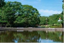 ウエリスアーデル湘南平塚の周辺環境の特徴画像