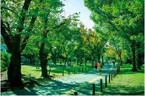 ジオ南砂町の周辺環境の特徴画像