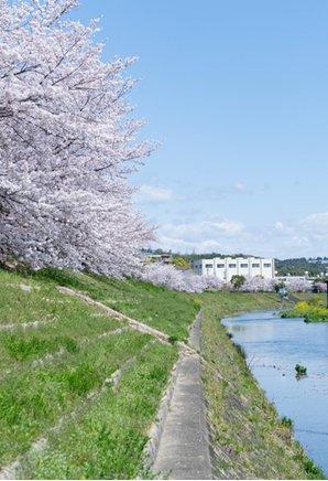 クラッシィハウス京都六地蔵の周辺環境の特徴画像