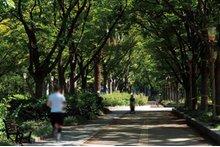 シティタワー大阪本町の周辺環境の特徴画像