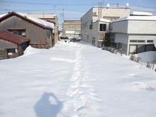 大字松森町(弘前東高前駅) 1800万円 奥から撮影しました。奥行69mあります。