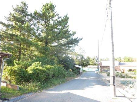 下川字窪畑 200万円 建築条件無し!樹木撤去後お引渡し致します!