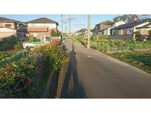 字東桜町(大河原駅) 780万円