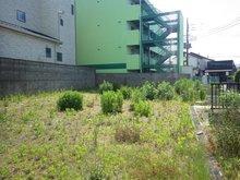 見川町(水戸駅) 900万円 現地(2020年6月)撮影