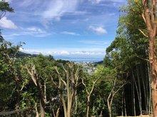 鎌田 499万円 現地からの眺望