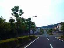 現地(2017年6月)撮影