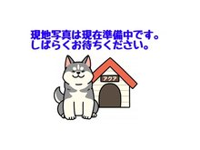 神戸市北区君影町1 グランドパレス君影 写真は準備中です。