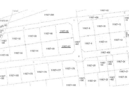 大野字奴メリ谷 290万円 土地価格290万円、土地面積449㎡